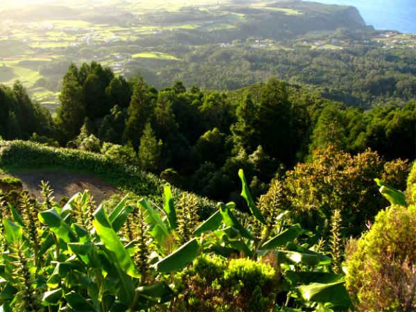 Ausblick vom Pico Alto
